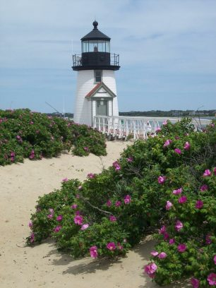 Hello Nantucket!