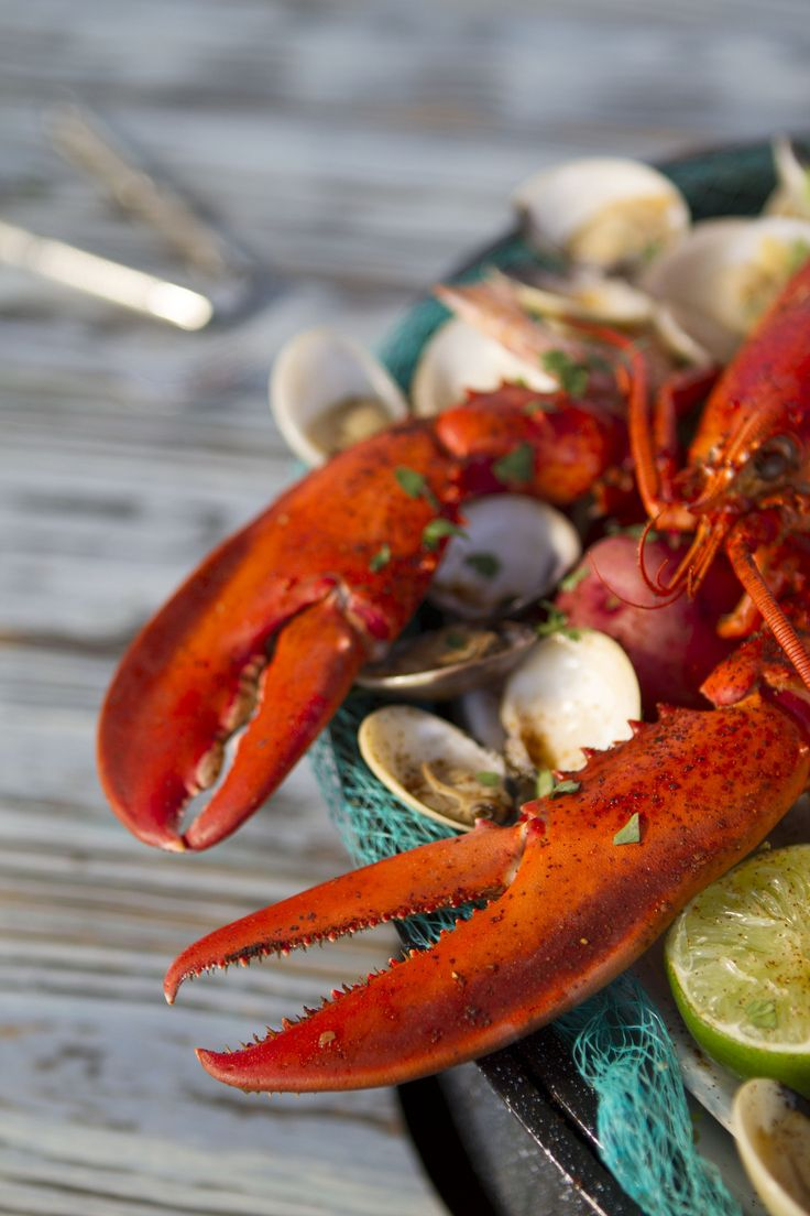 Nantucket Lobster Fest