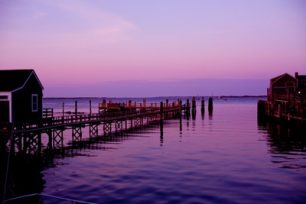 Straight Wharf in Shades of Radiant Orchid