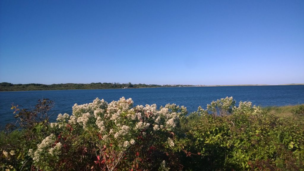 Indian Summer on Nantucket