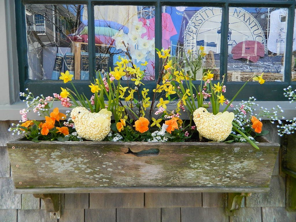 Daffy Window Decor
