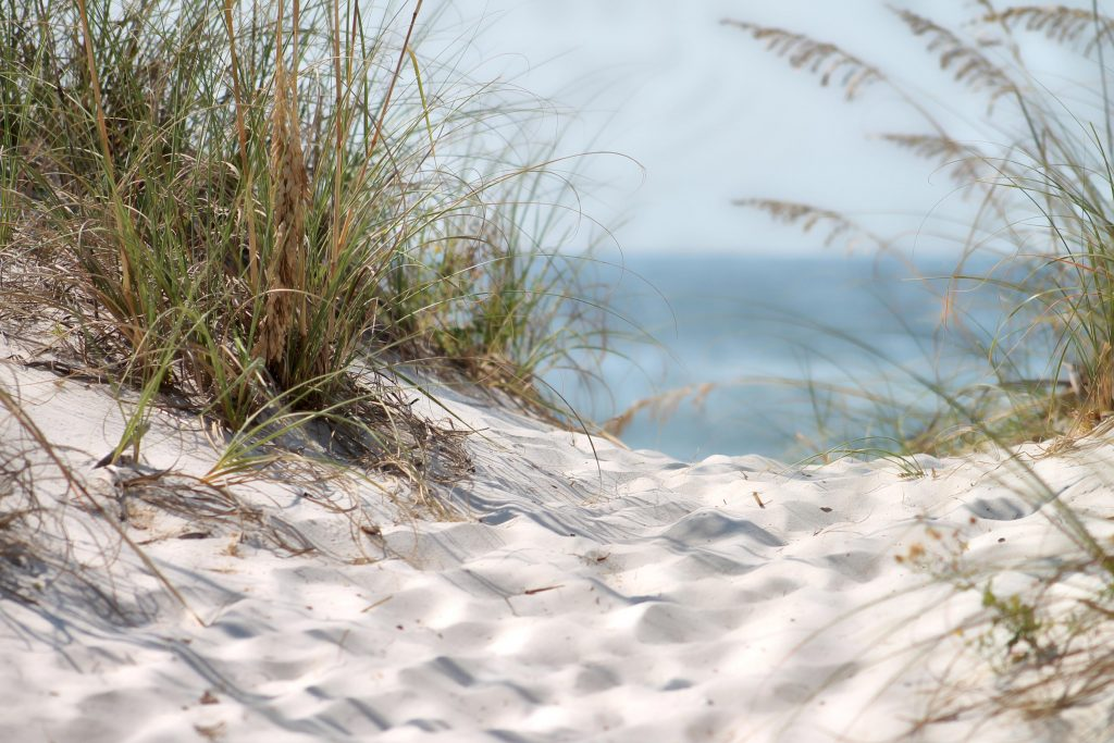 Salty Air & Sandy Dunes