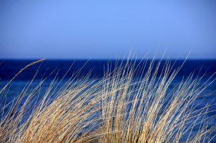 Nantucket Blues