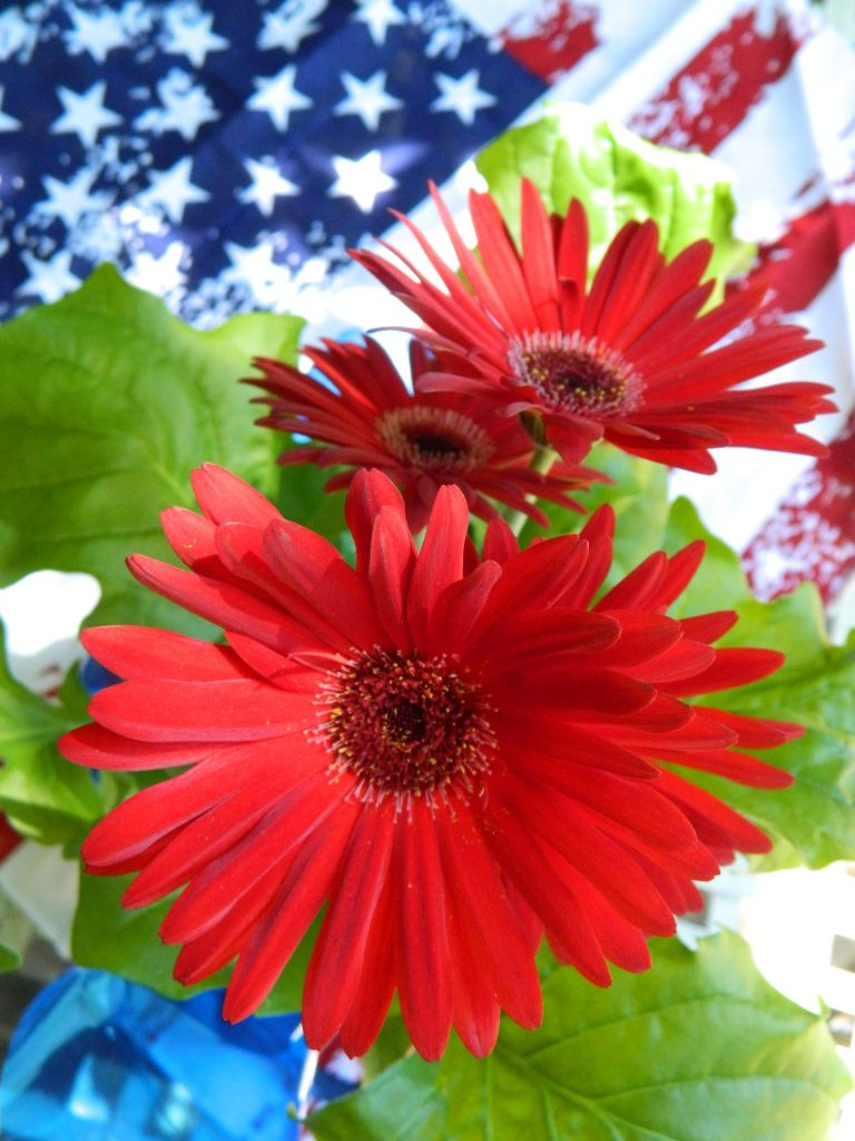 July 5th Flowers