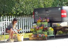 Flowers for sale in 'Sconset